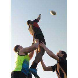 Les Faites du Rugby : Demi-Finale 1