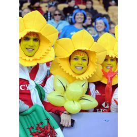 La cantine des supporters : Pays de Galles v Vainqueur Tournoi de Qualification